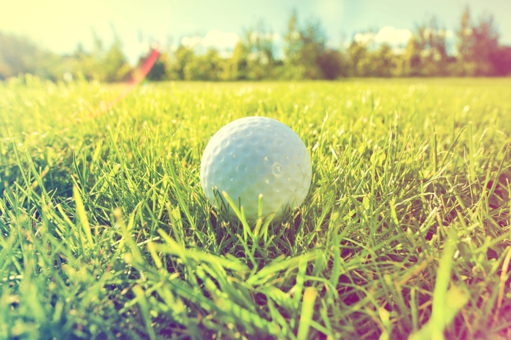 Golf game. Golf balls in grass. vintage picture.